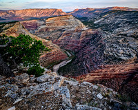 Dinosaur National Monument Color